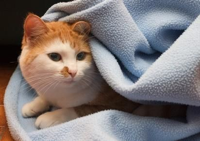gato bajo sabana
