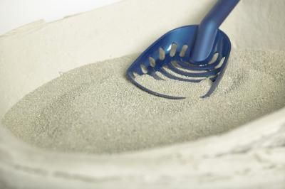 arena de gato
